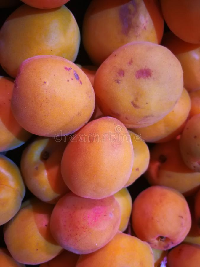 Close-up of apricot stock photography