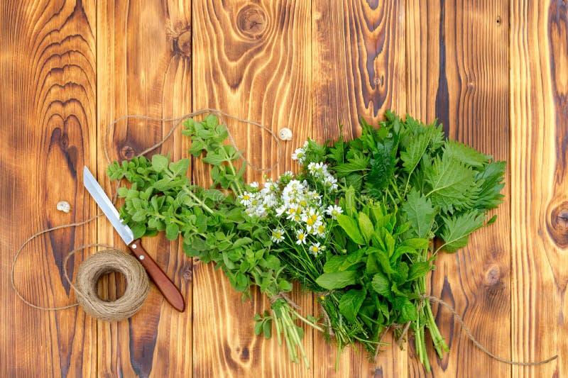 Close-up aromático, homeopaticamente das ervas fotografia de stock royalty free