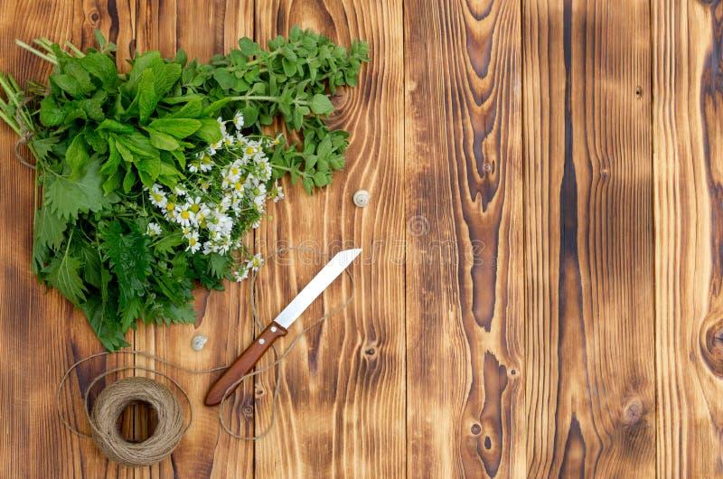 Close-up aromático, homeopaticamente das ervas imagens de stock