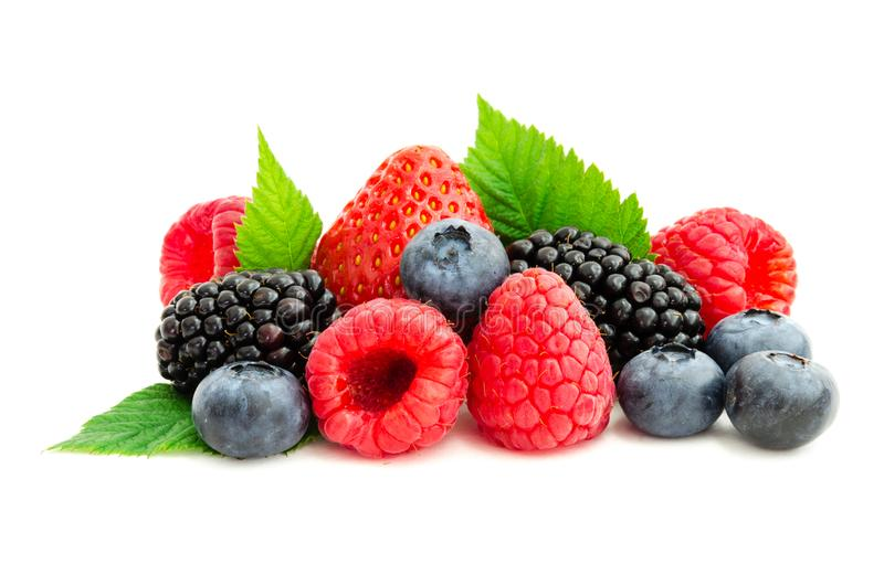 Studio shot mixed berries isolated on white royalty free stock images