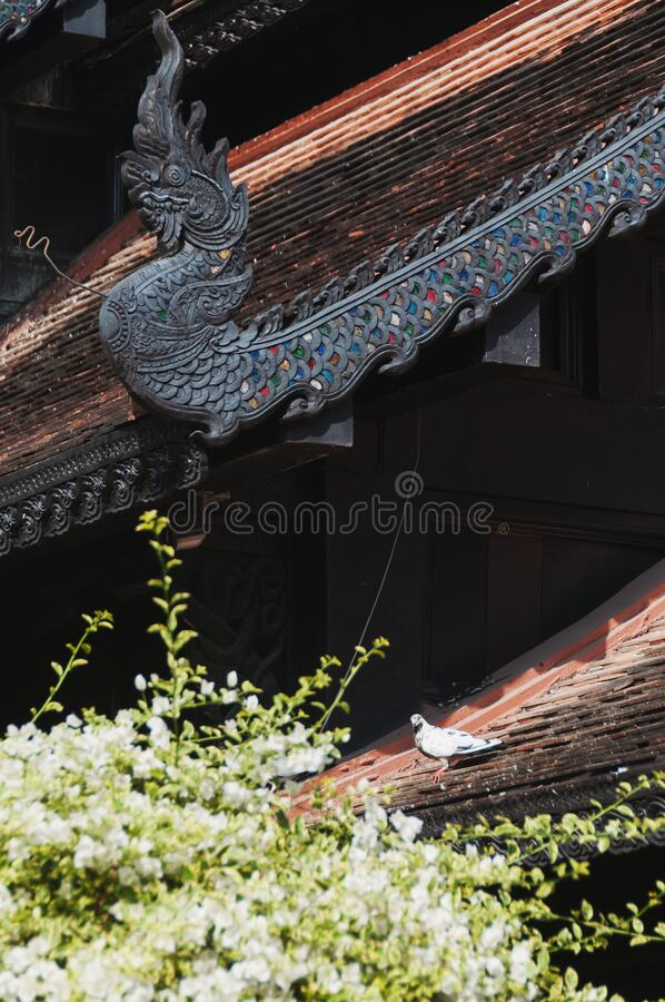 Asia Temple roof in Wat Lok Moli temple Chiang Mai stock images