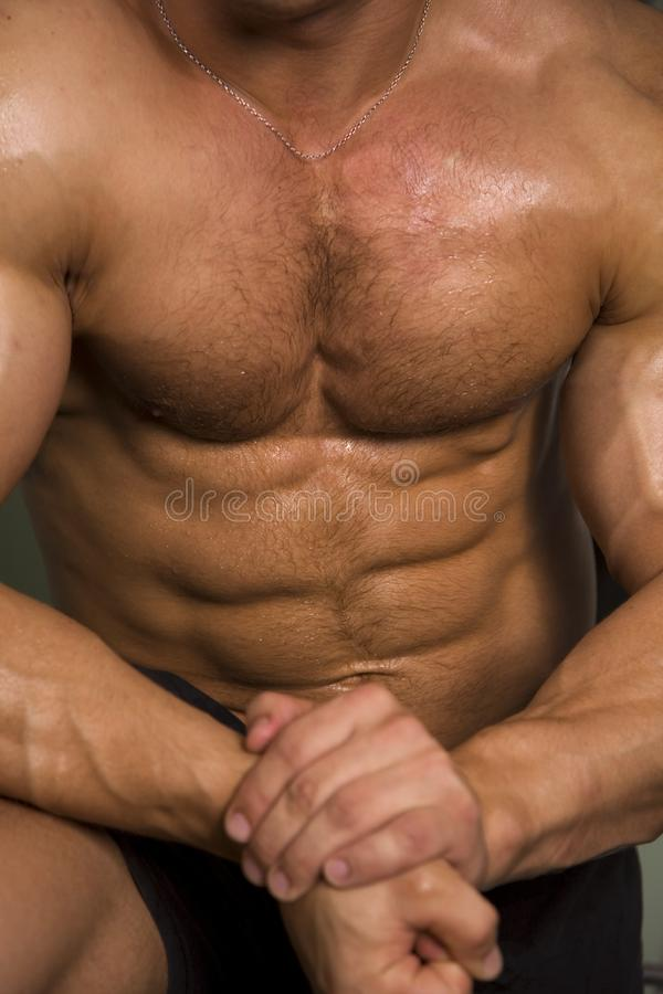 Download Close-up Of An Athletic Torso Stock Photo - Image: 6035632