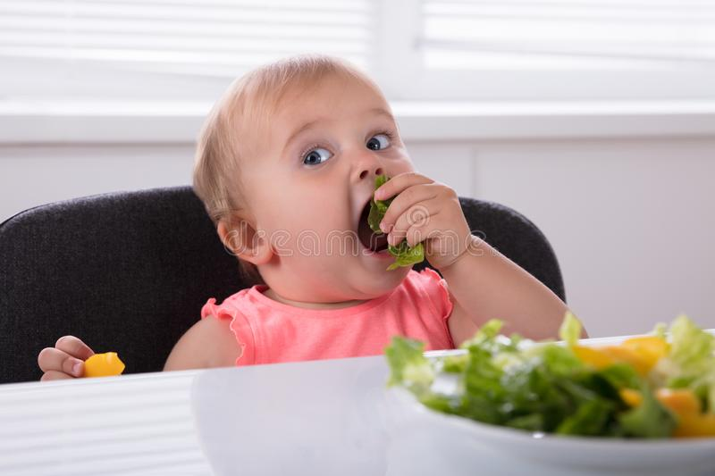 Baby Girl Eating Healthy Food royalty free stock photos