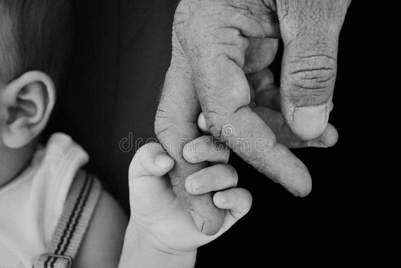 CLOSE-UP BABY`S OR CHILD HAND HOLDING ELDERLY FINGER OF GRANDFATHER. BLACK AND WHITE SHOT royalty free stock image