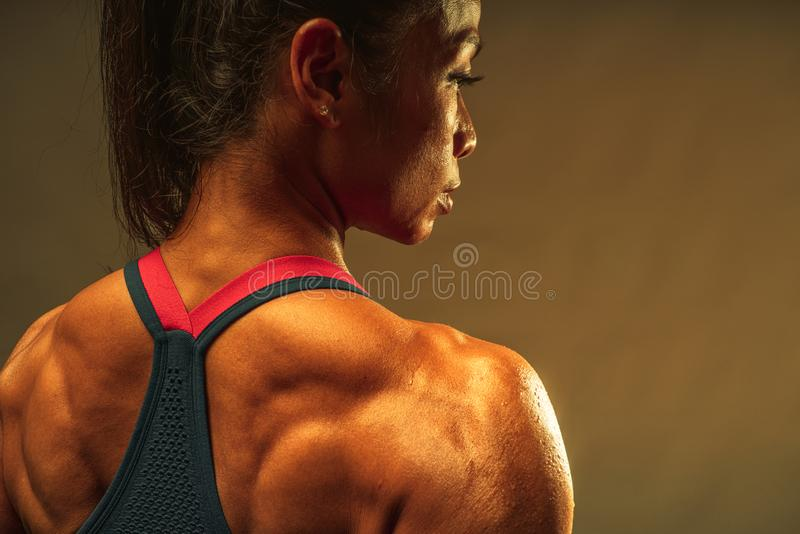 Close up of back muscle of the asian athletic middle age 40 year old woman show the lean and healthy muscle body after the fitness royalty free stock photography