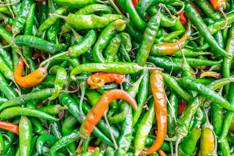 Close up background of cayenne peppers in green and some red, being sold in a farmer`s market. stock image