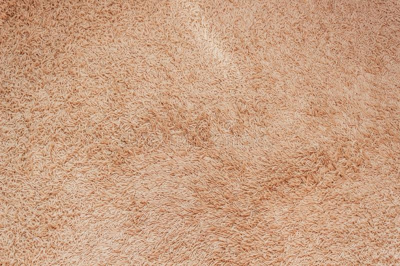 Close-up background of light brown carpet in the meeting room. stock photos