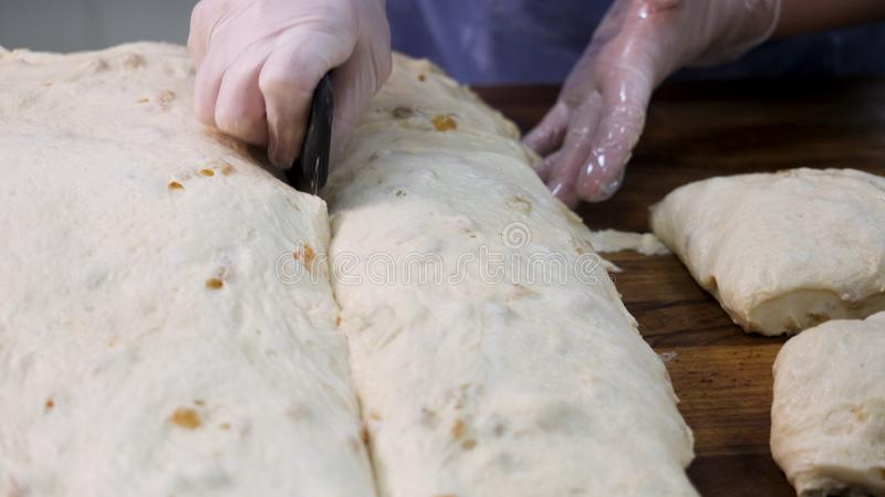 Close up for baker cutting dough into pieces before cooking and weighing them at the bakery. Stock footage. Woman making stock photography