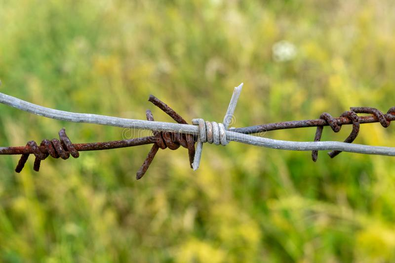 Close-up. barbed wire in front of a green grass royalty free stock photos