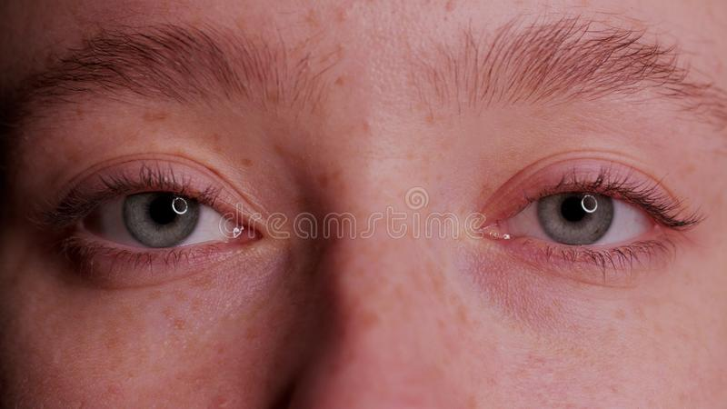 Close-up Beautiful Blue Eye royalty free stock photography