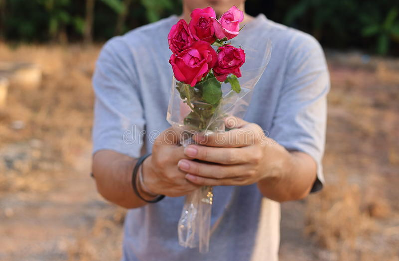 Close up a beautiful bouquet of red roses is given by young man. Romantic love or Valentine`s day concept. royalty free stock image