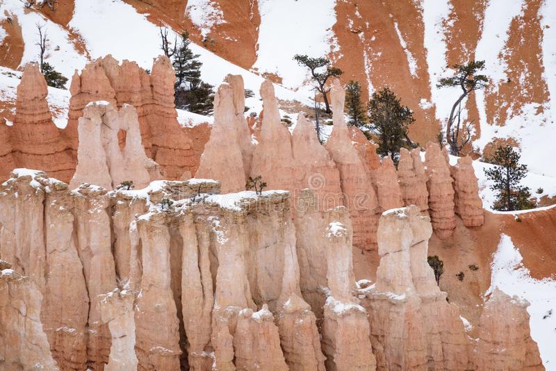 Close Up of beautiful snow covered mountains during the freezing winter period in Bryce  Canyon National Park, Utah, United States. Of America royalty free stock image