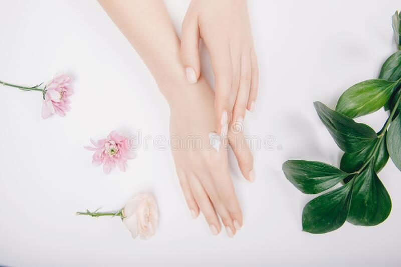 Close-up beautiful sophisticated female hands with pink flowers on white background. Concept hand care, anti-wrinkles stock photo