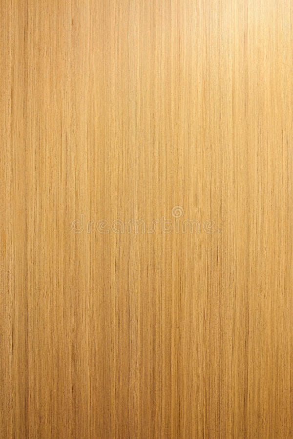 Close up beautiful texture of bark wood us as natural background stock images