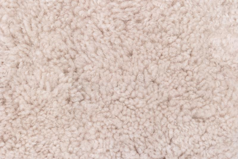 Close-up of the beige carpet texture background in the meeting room.  royalty free stock image