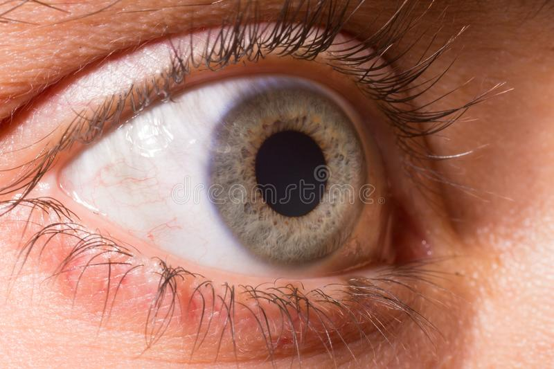 Close-up on a blue eyes. Iris. Close up on a blue eyes. Iris. Iridology. Soul. Dilated pupil royalty free stock photography