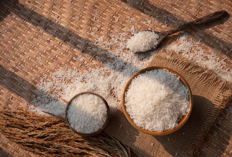 White rice in ceramic bowl and wooden spoon with ear of paddy on threshing basket. Sunlight and shadow on surface of white rice Thai Jasmine rice in ceramic bowl royalty free stock photo