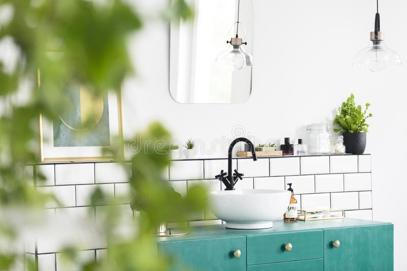 Close-up of blurred leaves with a sink, green cupboard and mirror in the background in the bathroom interior. Real photo stock photos