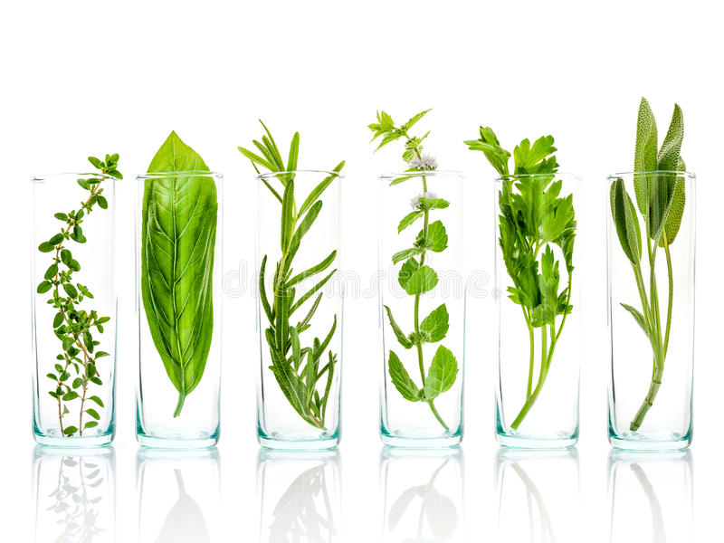 Close Up bottles of essential oils with fresh herbs . Sage, rose stock photos