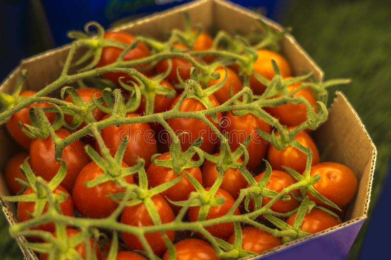 Close-up of box with cherry tomatoes.  royalty free stock photography