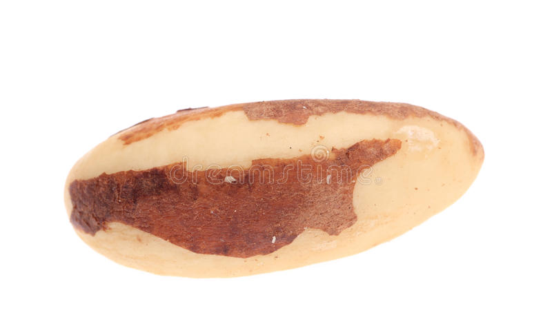 Close up of brazil nuts. stock photo