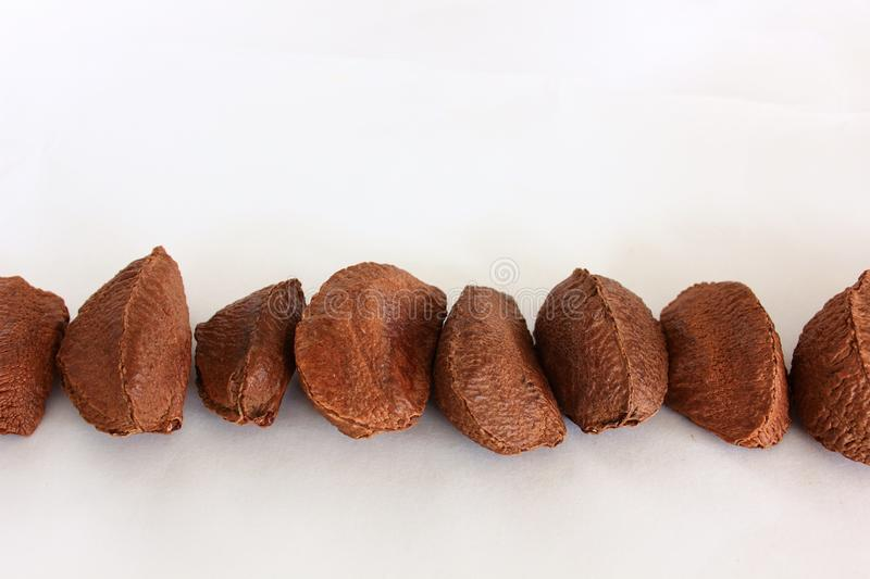 Close up of Brazil Nuts stock images