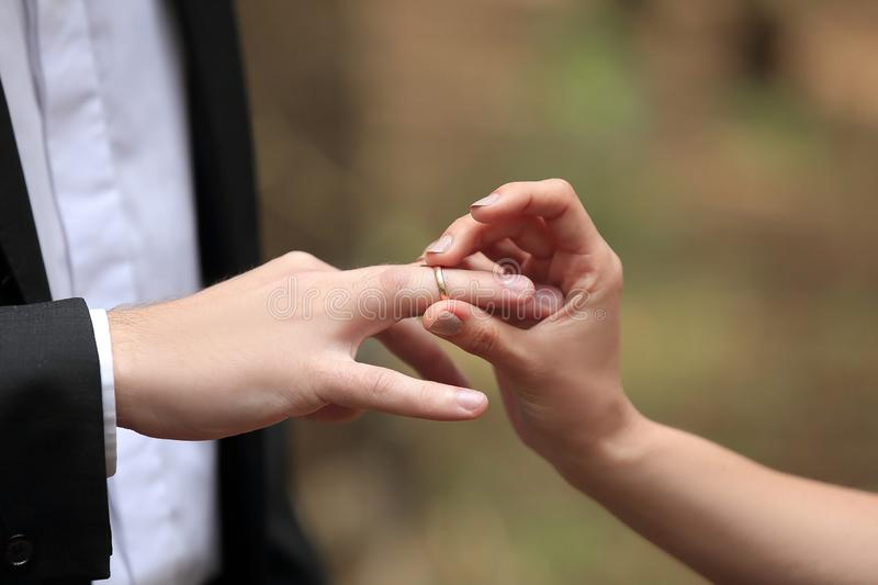 Close, up., bride, putting, wedding, ring, grooms, finger. stock photography