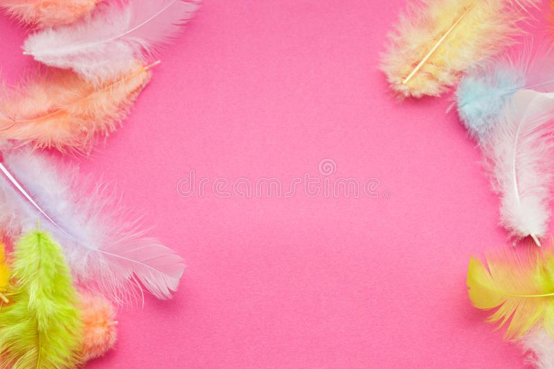 Close-up of bright multicolored feathers on a pink background, space for text.  royalty free stock photography