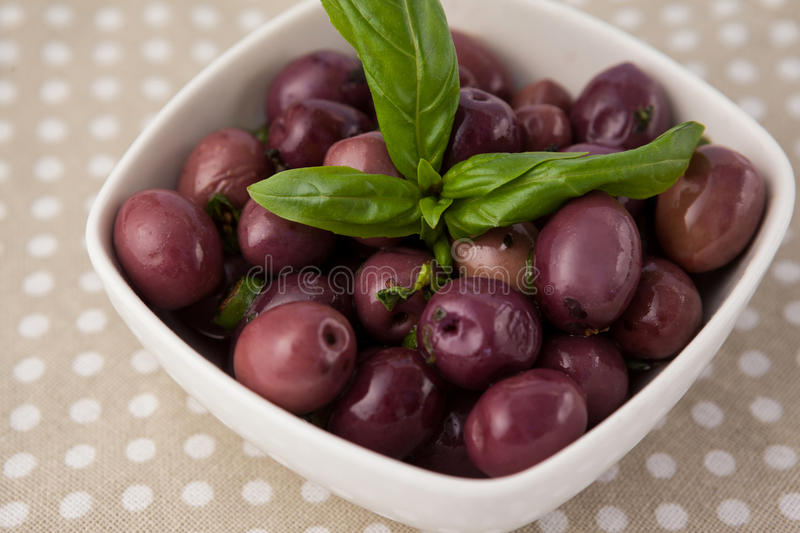 Close up of brown olives with herb royalty free stock photo