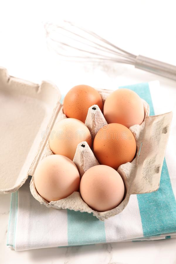 Brown ox with egg. Close up on brown ox with egg stock image
