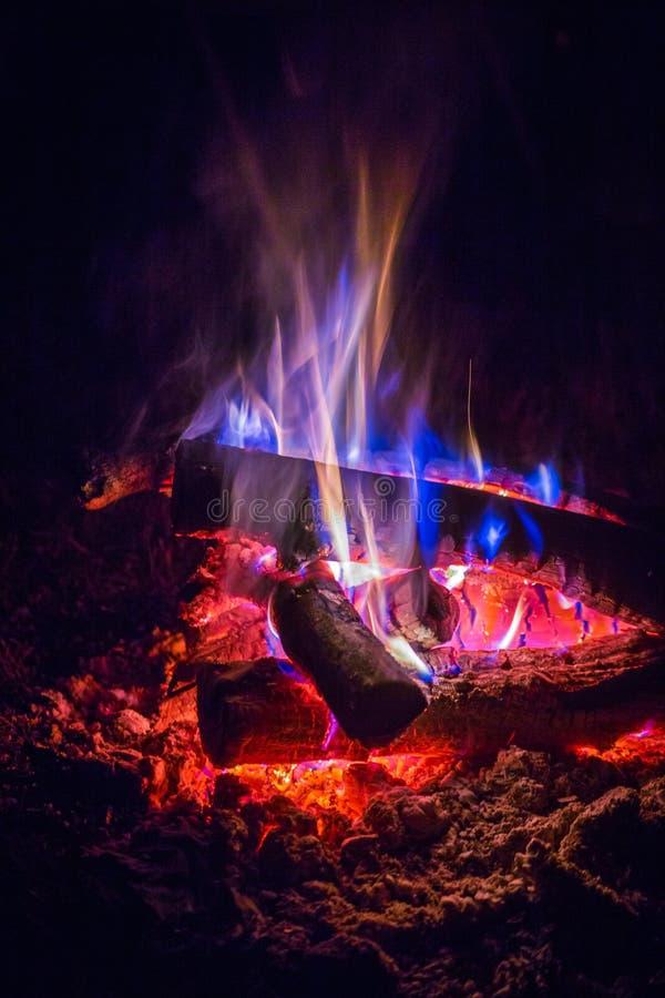 Close-up of a burning beautiful bonfire royalty free stock image