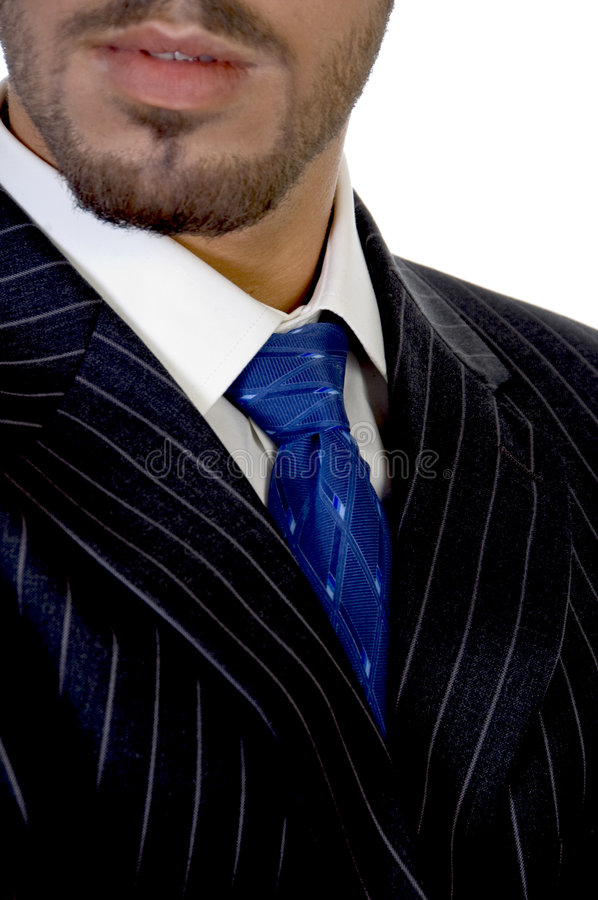 Download Close Up Of Businessperson's Tie Stock Photos - Image: 6482543