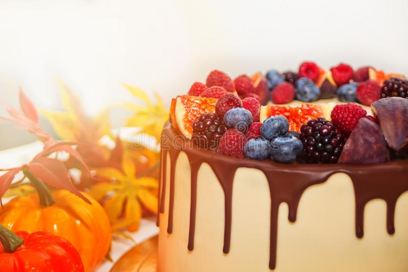 Close up cake with chocolate smudges, decorated berries and fruits with autumn leaves on the background royalty free stock images
