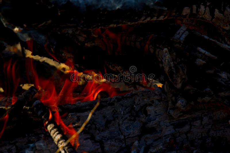 Close up of camp fire flames and fire royalty free stock photo