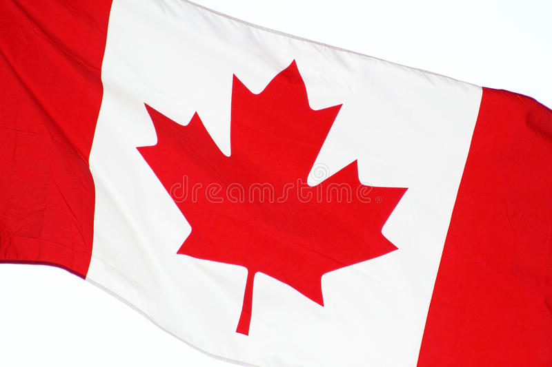 Close up of the CANADA flag - flying free on Canada Day stock image