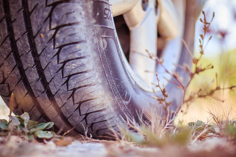 Close up of car tyre in the desert, safari royalty free stock photo
