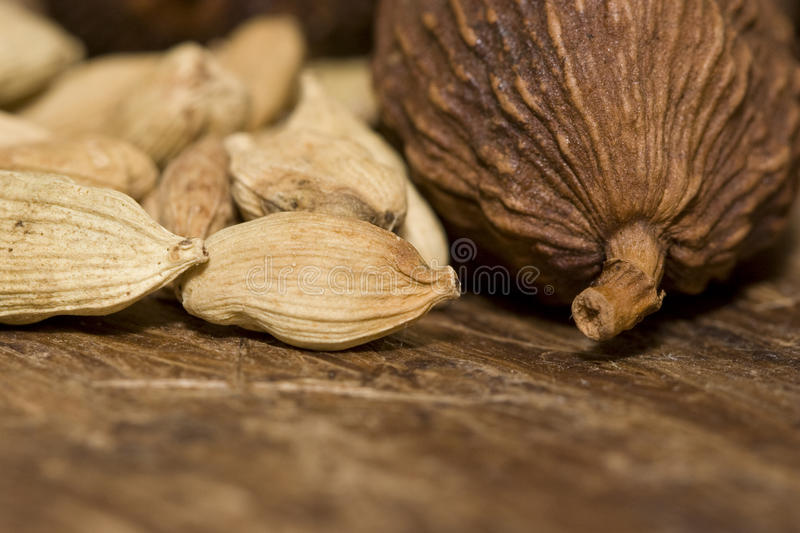 Close-up of cardamom pods royalty free stock image