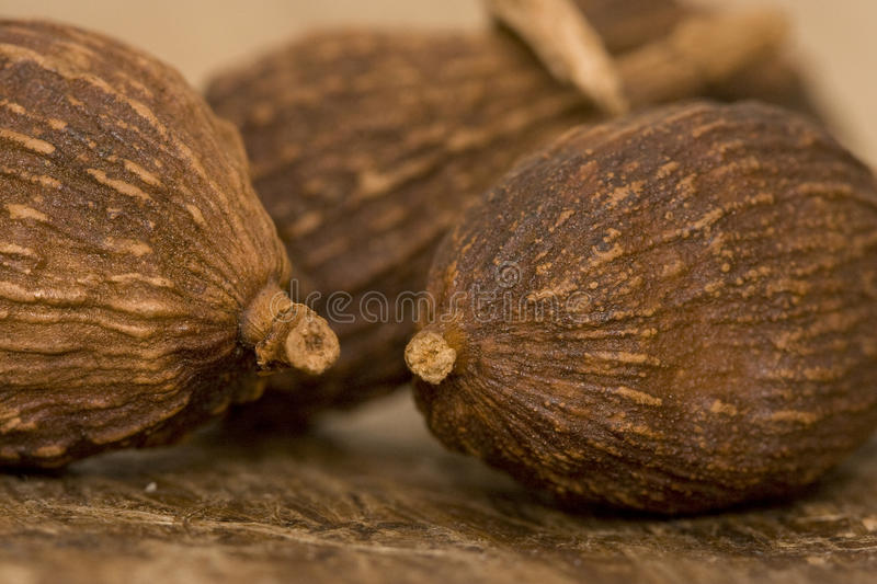 Close-up Of Cardamom Pods Royalty Free Stock Images