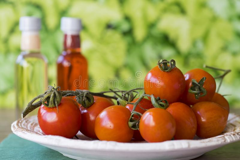 Fresh red cherry or ramano tomatoes on white plate in garden, against green leaf background. Space for text stock photography