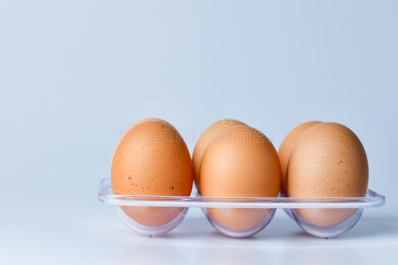Close up of Chicken Eggs royalty free stock images