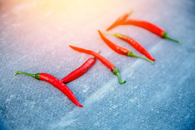 Close-up of chili pepper stock images