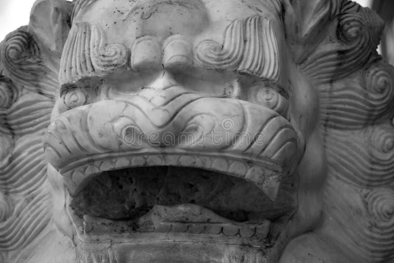 Close up chinês preto e branco da estátua da cara do leão do fundo foto de stock