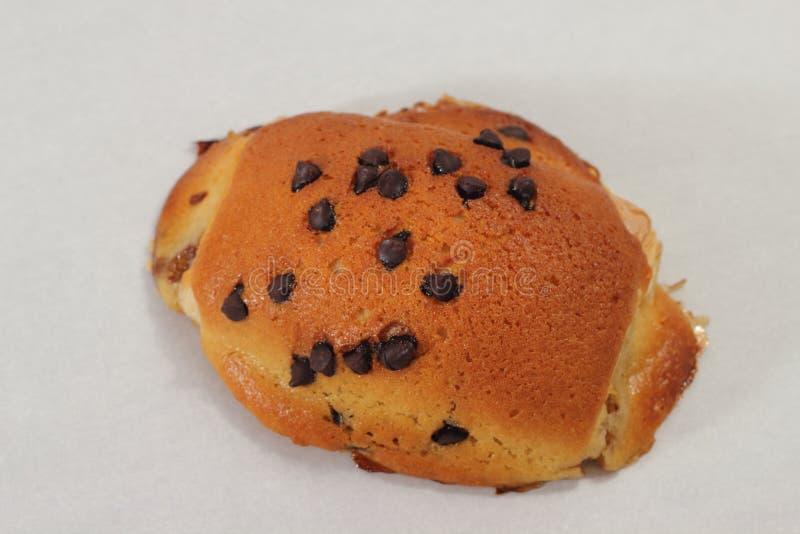 Close Up Of Chocolate Chip Bun