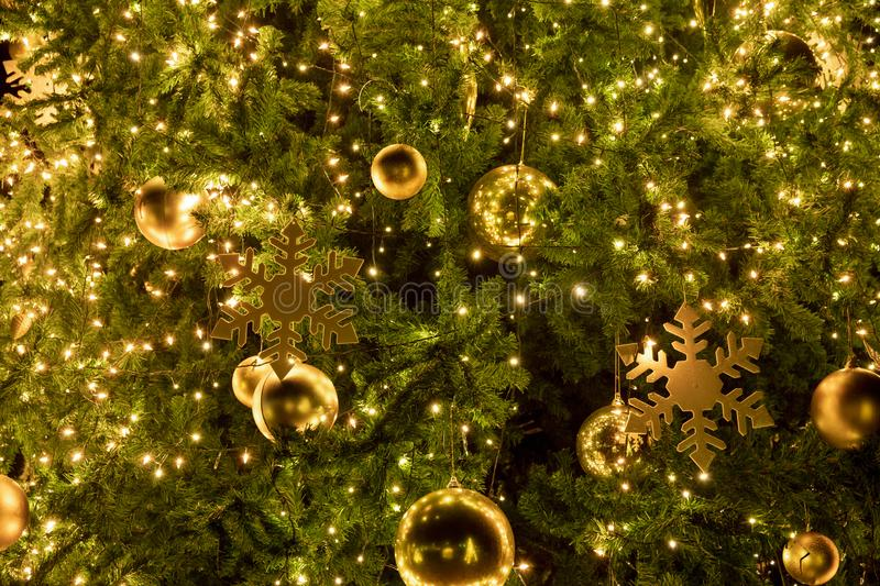 Close-up Christmas tree with decoration, light and gold ball at night. In Christmas and New Year holiday royalty free stock images
