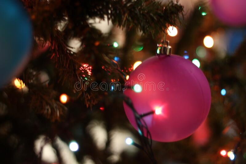 Close-up Of Christmas Tree At Night Free Public Domain Cc0 Image
