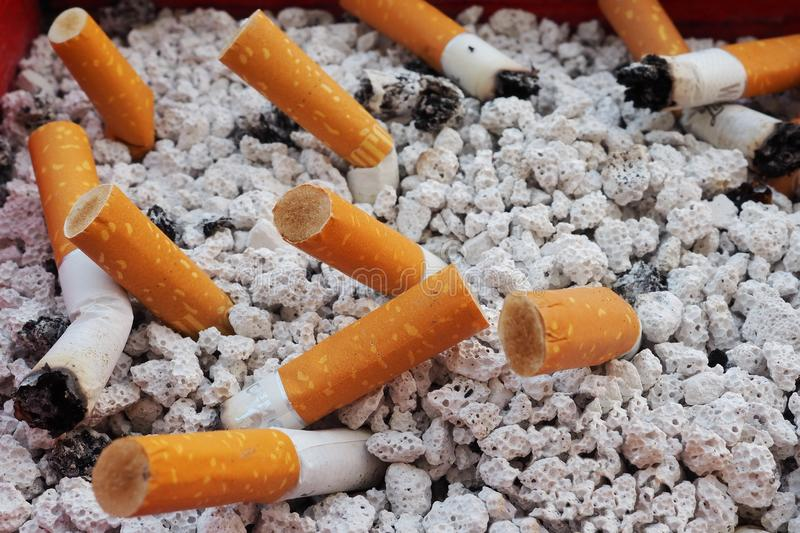 Close up on cigarettes butts royalty free stock photography