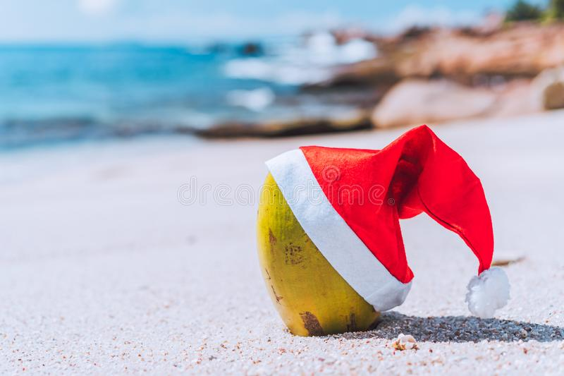 Close up of coconut wearing santa hat on tropical sandy beach with ocean waves rolling against rocky coastline in royalty free stock images