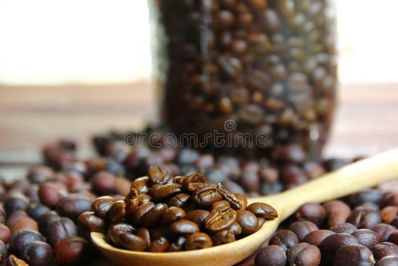 Coffee beans on wood spoon on brown wood floor .dried coffee beans with roasted coffee beans. Close up coffee beans on wood spoon on brown wood floor .dried stock photos
