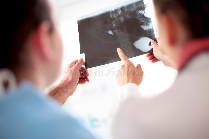 Close up of colleagues doctors holding x-ray. Colleagues doctors exchanged opinions looking at x-ray or roentgen image stock image