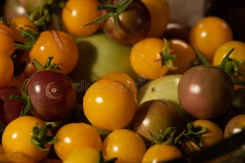 Close up of colorful cherry tomatoes: green, yellow, orange and red royalty free stock photos